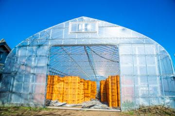 茨城県の施工実績|サツマイモ用ビニールハウス(55坪)の画像