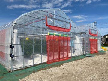 神奈川県の施工実績|トマト用ビニールハウス(72坪)の画像