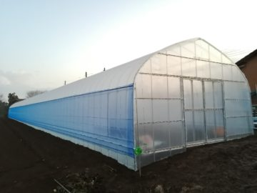 千葉県の施工実績|サツマイモ育苗用ビニールハウス(110坪)の画像