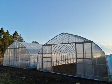 千葉県の施工実績|サツマイモ用パイプハウス(97坪)の画像