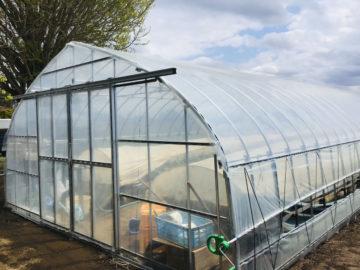 千葉県の施工実績|サツマイモ育苗用ビニールハウス(50坪)の画像