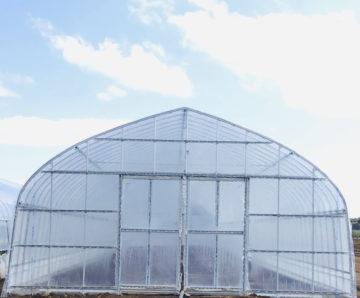 千葉県の施工実績|スイカ用パイプハウス(456坪)の画像