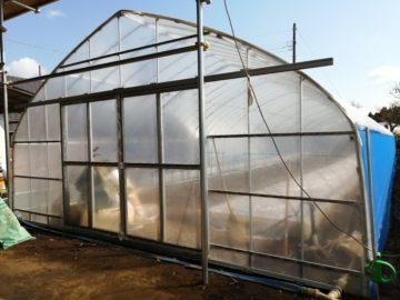 (株)共走|千葉県の施工実績(新規就農)|さつまいも用ビニールハウス(35坪)の画像