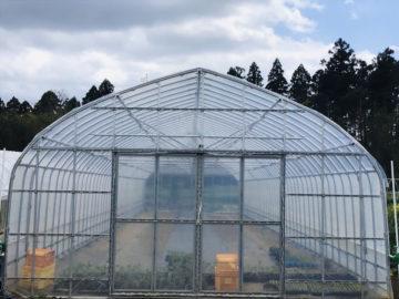 千葉県の施工実績|補強パイプハウス(39坪)の画像