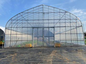 千葉県の施工実績|野菜用ビニールハウス(36坪)の画像