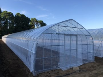 千葉県の施工実績|スイカ栽培用パイプハウス(341坪)の画像