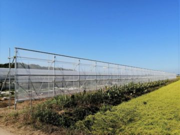 千葉県の施工実績|防風施設(H3m×W100m )の画像