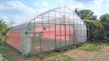 園芸温室ビニールハウス(50.2坪)の施工実績|多肉植物栽培の画像