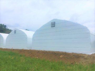 千葉県の施工実績|菌床椎茸用パイプハウス(206坪)の画像