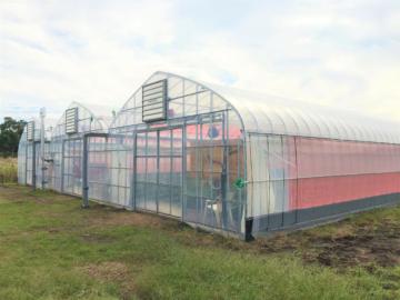 千葉県の施工実績|イチゴ栽培用パイプハウス(286坪)の画像
