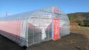 (株)共走|茨城県の施工実績|野菜栽培用ビニールハウス施工(70坪)の画像