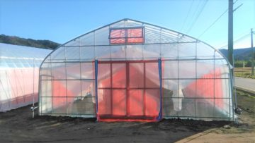 (株)共走|茨城県の施工実績|【ハウス栽培】野菜用ビニールハウス(74坪)の画像