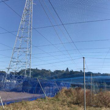 (株)共走|千葉県の施工実績|【修繕・張替】ブルーベリー棚・防鳥ネットの画像