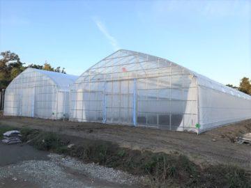 千葉県の施工実績|育苗用ビニールハウス(137坪)の画像