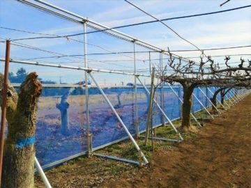 千葉県の施工実績|防風施設(H3mxW75m+4.5m+42.5m)の画像