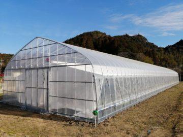 (株)共走|千葉県の施工実績|【カーテン付き】農業用パイプハウス(66坪)の画像