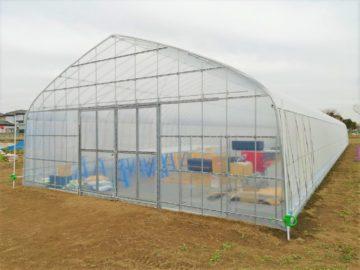 (株)共走|埼玉県の施工実績|園芸用パイプハウス(多肉植物)(66坪)の画像