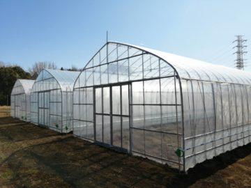 (株)共走|千葉県の施工実績|【新規就農】農業用ビニールハウス(176.7坪)の画像