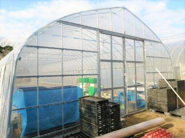 (株)共走|千葉県の施工実績|稲の育苗用パイプハウス(40坪)の画像