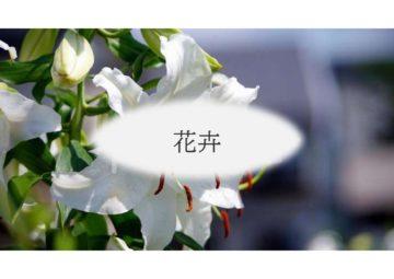 (株)共走 千葉県の施工実績 花卉栽培用パイプハウス(150坪)の画像