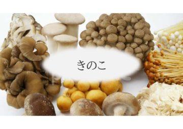(株)共走 千葉県の施工実績 菌床椎茸用パイプハウス(206坪)の画像