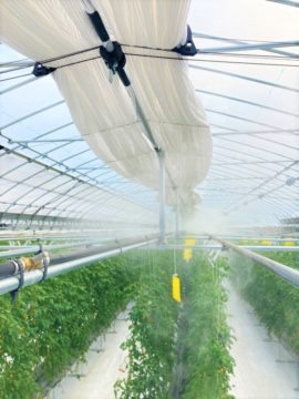 商品紹介|【農業設備】ミスト装置の画像
